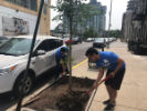 UB alumni participating in Alumni Day of Service 2019 in New York City
