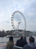 At nearly 443 feet tall, the London Eye is the world's largest cantilevered observation wheel.