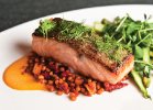 Grilled Faroe Islands salmon with roasted local asparagus, spring garlic vinaigrette and wheat berries.