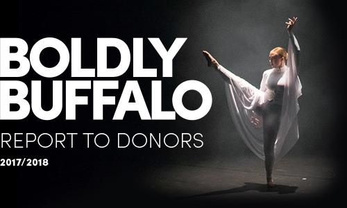 Annual Donor Report