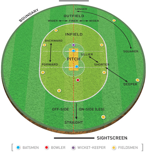 Cricket Pitch Diagram Bing Images