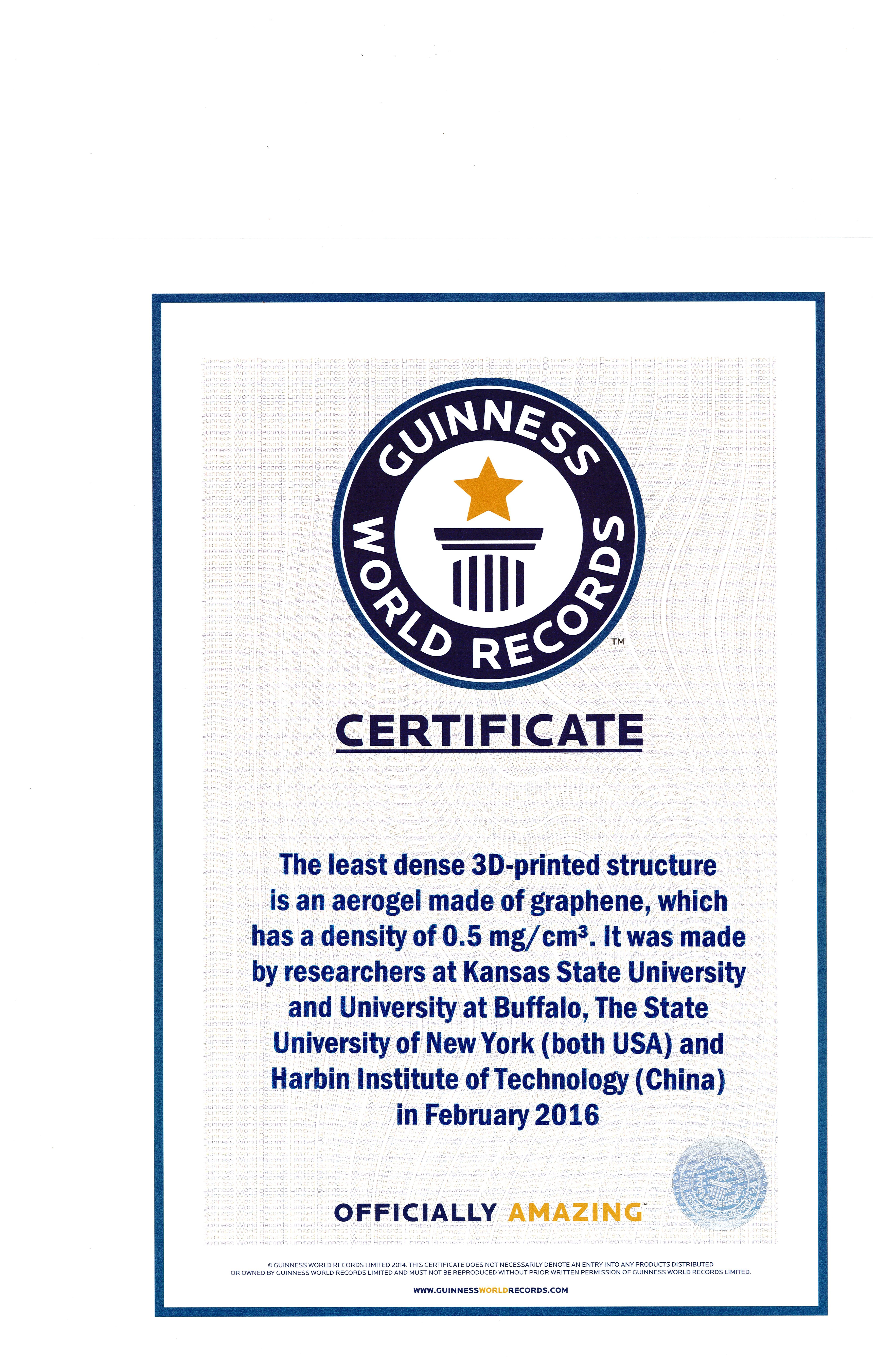 Guinness World Record Certificate Template 28 Images World