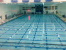 Pool - 86 Alumni Arena