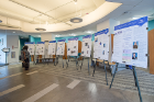 Poster presentations of the fellows' projects.