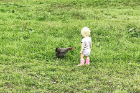 Flora visits with one of the family's chickens.