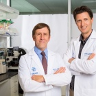 Kenneth L. Seldeen, PhD; Bruce R. Troen, MD.