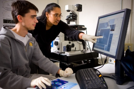 UB biology faculty member Shermali Gunawardena and graduate student Gary Iacobucci examining a video of a brain blockage in a fruit fly larvae on a computer screen.