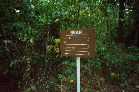 "A brown sigh contains the word ""bear"" and meandering lines beneath it."