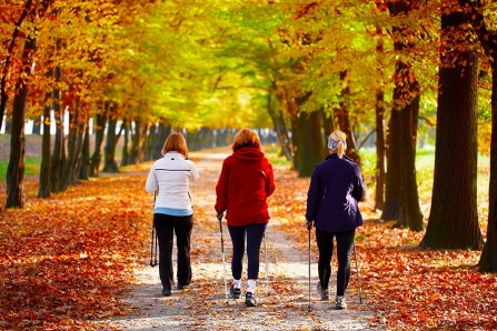 Photo of three woman walking down a tree-lined path with colorful fall leaves all around.