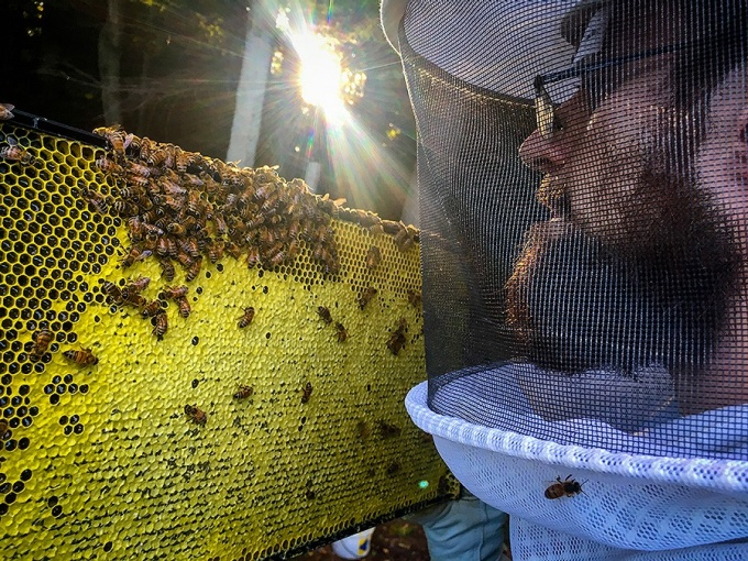 Nick Peterson inspects his hive