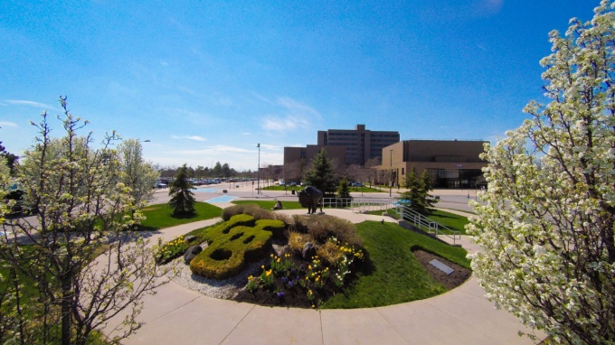 view of north campus from the buffalo statue in front of the center for the arts