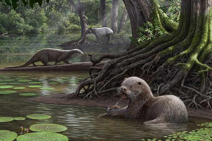 Illustration of Siamogale melilutra, a massive wolf-sized otter, in a forest setting.