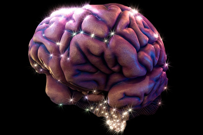 concept image of a brain