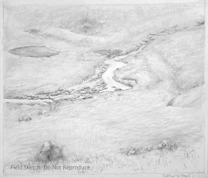 Anna McKee sketch of the outflow to Fogel Lake.