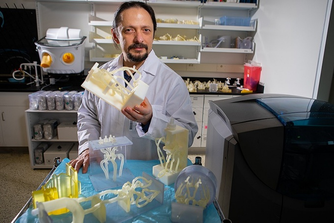 "Ciprian ""Chip"" Ionita, assistant professor Department of Biomedical Engineering holds vascular 3D printed phantoms at University at Buffalo- Gates Vascular Institute."