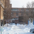 A student walks down a cleared walkway om Jan. 31.