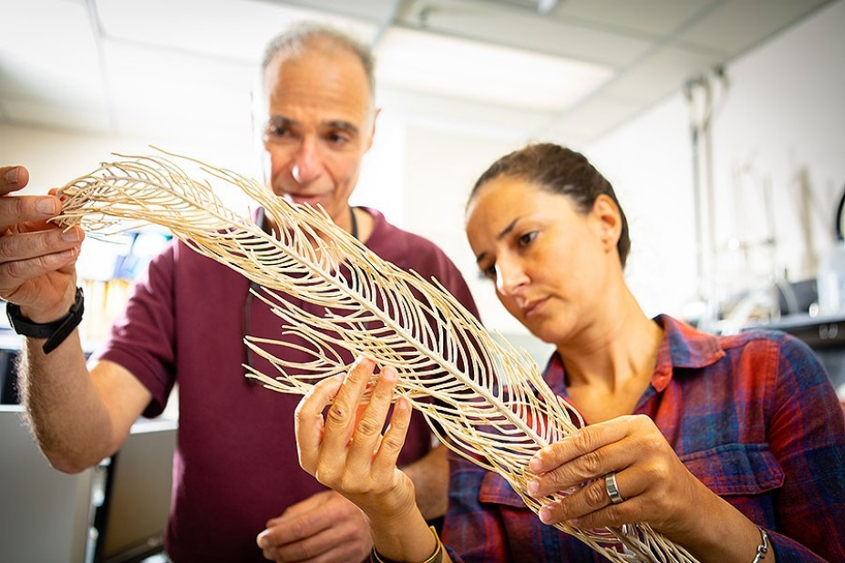 Angela Martinez Quintana examines a piece of coral with Howard Lasker.