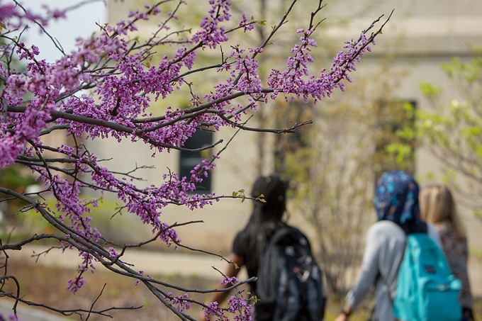 Students, one wearing a head scarf, walking on the South Campus.