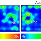Heat map images show the amount of time in seconds that the test animals spent in the 3-chamber apparatus, with each side chamber containing a social (S) or a non-social (NS) stimulus under the cup (circle).