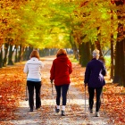 Rear view of three older women walking along a leaf-covered road.