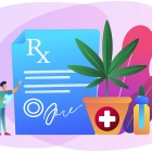 Concept of cannabinoid research featuring a prescription, a marijuana plant and CBD oil.