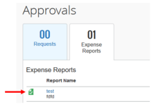 Figure 4 of review expense reports as preview delegate.