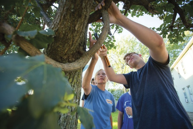 University Heights residents get tree-pruning tips in CoLab's South Campus neighborhood.