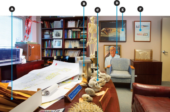 The office of Raymond Dannenhoffer, associate dean for services in the School of Medicine and Biomedical Sciences