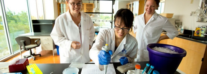 Students working in a Pharmacy Lab.