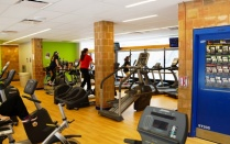 a gym with students exercising on ellipticals and treadmills.