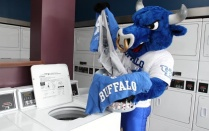 victor e bull mascot washing his clothes.