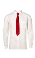White button up collared shirt with a red tie.