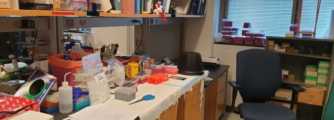 Lab Workbench in Farber Hall, East lab.