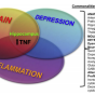 a diagram of how pain, depression, and inflammation intersect.