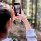 woman takes a photo of some trees on her smartphone.