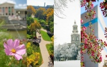 Buffalo landmarks and landscapes in four different seasons.