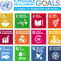 UN Sustainable Goals Graphic.