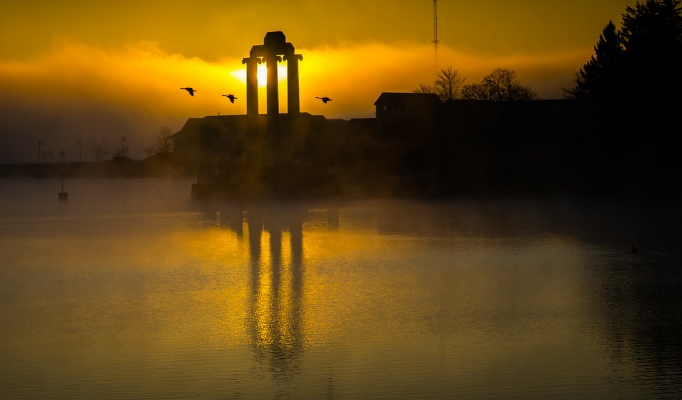 Geese flying in front of Baird Point on UB's north campus at sunrise.