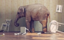 The Elephant in the Room: Towards a Dispositional (and Unifying) Account of Addiction.