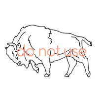 Old charging Buffalo logo.