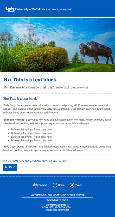 Enewsletters And Promotional Emails Identity And Brand - Promotional email template