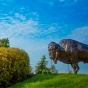 Bronze statue of a buffalo on top of a grassy hill.