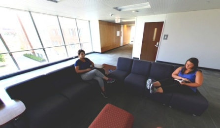 Greiner Hall Floor Lounge.