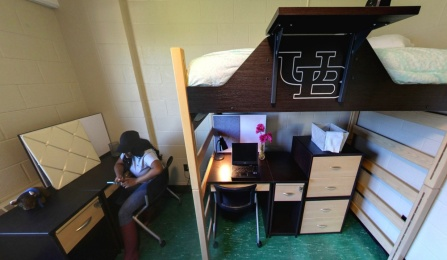 lofted bed with desk underneath.