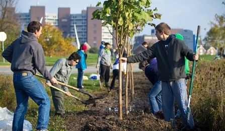 students planting tree.