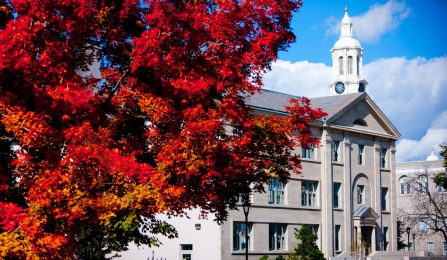 An image of Crosby and Hayes Halls on UB's south campus.
