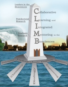 The CLIMB logo, a tower that represents the path to leadership.
