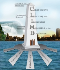 The CLIMB logo, which is a tower representing the path to leadership.