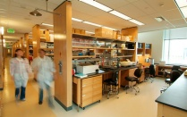 Image of research Lab.