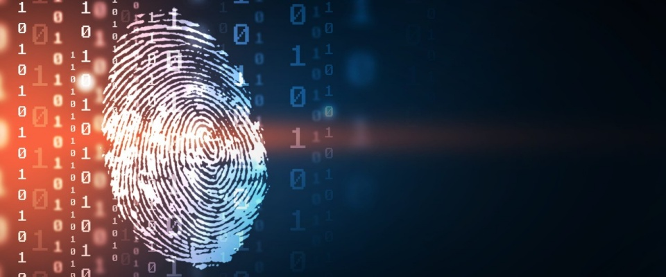 Fingerprint overlaid with biometric measurements and computer code.